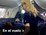 En el vuelo